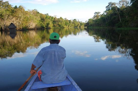 4-Day Amazon Jungle Adventure from Iquitos  Depart from the port by fast boat for a 3-hour ride traversing the Amazon river to reach the jungle lodge. On this adventure you will visit lake Sapote, go on a boat safari to see caimans, catch fish, go on a night-walk to search for huge frogs and nocturnal jungle animals and take a 5-hour nature hike into the jungle to visit local villages and immerse yourself in nature, among many other activities!Day 1: Transfer Iquitos - Jungle ...