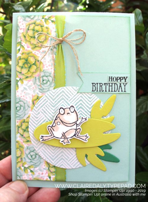 Awht Stampin Up Team Colour Creations Week 38 Pool Party Birthday Greetings For Kids Cat Birthday Card Cool Birthday Cards