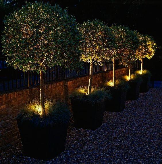 Landscape Gardening Courses Glasgow Landscape Gardening Exeter Landscape Lighting Landscape Design Garden Lighting Design