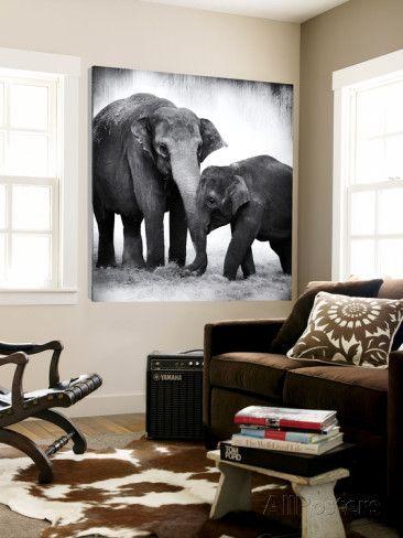 Elephant III Art by Debra Van Swearingen at AllPosters.com