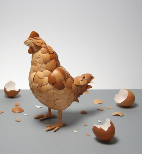 chicken from Egg Shells?!