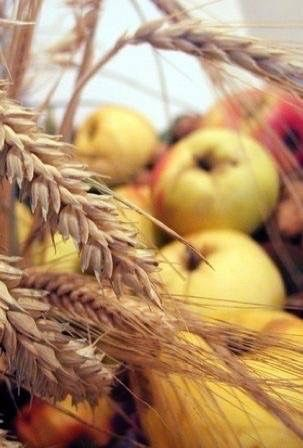 apples wheat harvest
