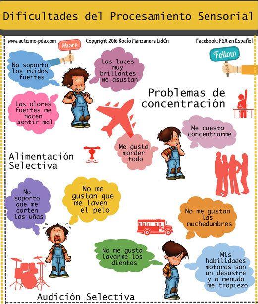 Dificultades del procesamiento sensorial por Rocío Manzanera Lidón. Enero 2016