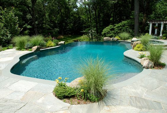 Pool designs swimming pools and pools on pinterest - Swimming pool filtration system design ...
