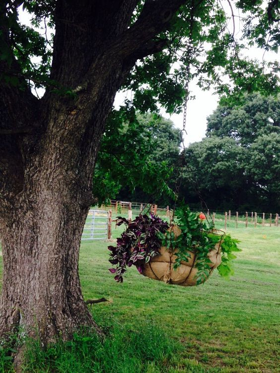 Metal Hanging Basket with Burlap Liner