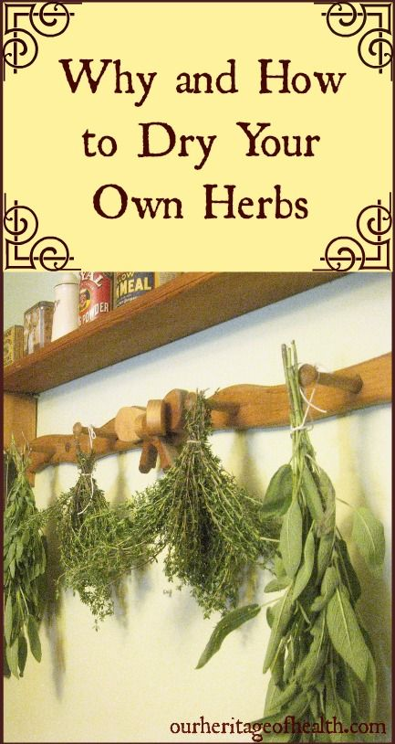 Why and how to dry your own herbs | Our Heritage of Health