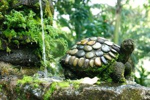 stone turtle fountain
