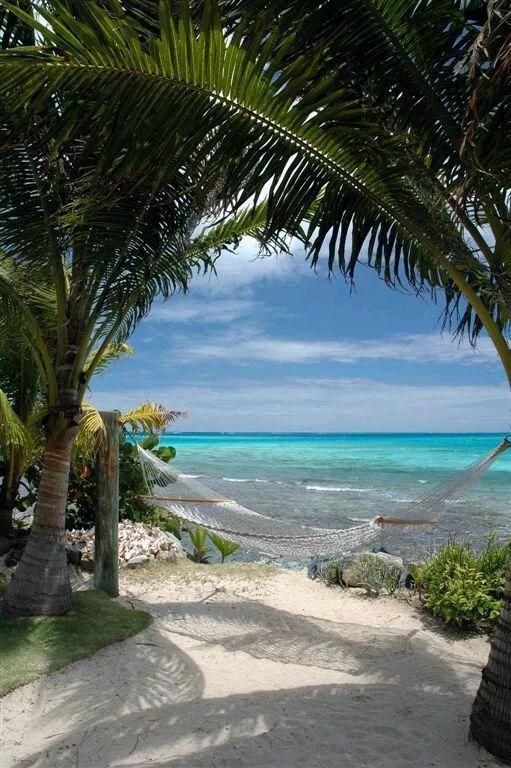 ハワイのビーチサイドでハンモック