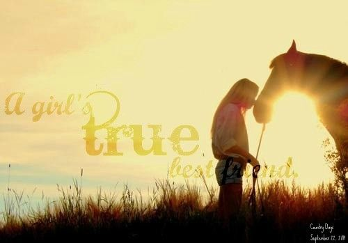 A girl's true best friend = horses