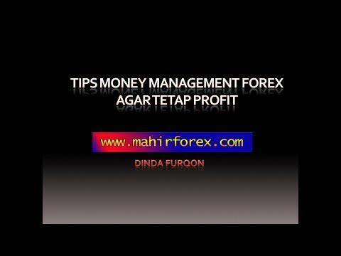 10 Cara Bermain Forex Yang Efektif Meningkatkan Profit Setiap Hari | Kunci Sukses-Usaha