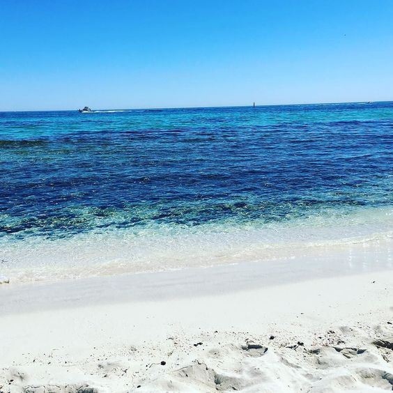 Waiting for some swimmers to arrive before heading to Thompson bay #the basin #rottnestisland #rottnest #relax #rottnestswim #bliss #beach by ellyce_cockill http://ift.tt/1L5GqLp
