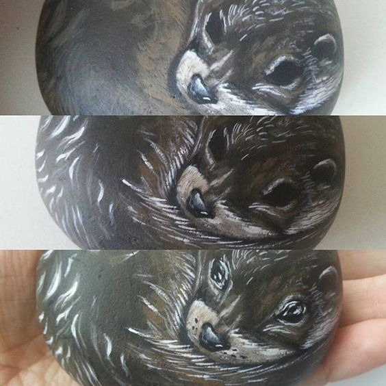 Progression of work on this little guy.  #paintedcobble #paintedrocks #otter #otters #otters #paintingprocess #wip