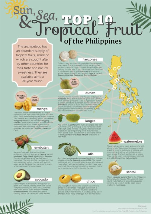 The Top 10 Tropical Fruit of the Philippines poster | infographic ...