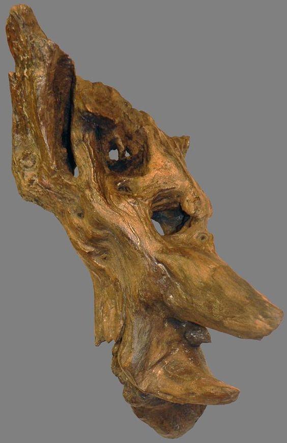Yann Viau Bois Flott Driftwood Schwemmholz Cire Wax