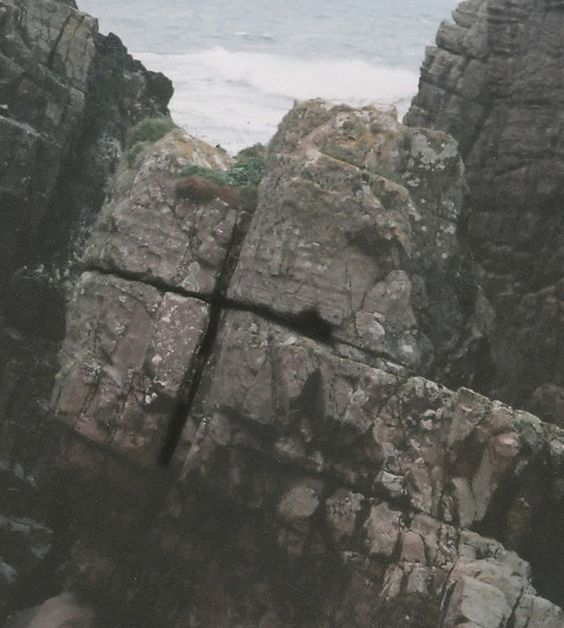 naturally occurring cross