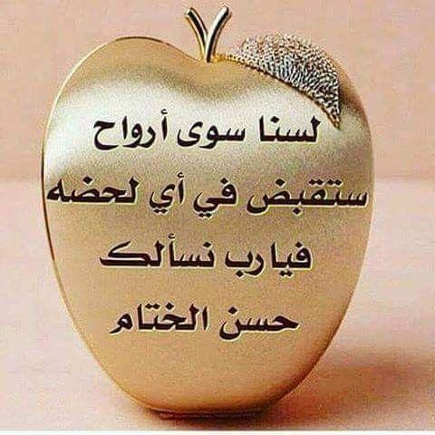 محطات للحياة تنتهي الحياة عندما يتوقف التنفس ينتهي الحب عندما يتوقف الاهتمام تنتهي الصـداقة Islamic Quotes Quran L And Light All About Islam