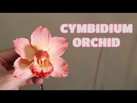 Cymbidium Orchid Gumpaste Clay Cold Porcelain Vlog 15 By Marckevinstyle Youtube In 2020 Sugar Flowers Tutorial Cold Porcelain Flower Tutorial
