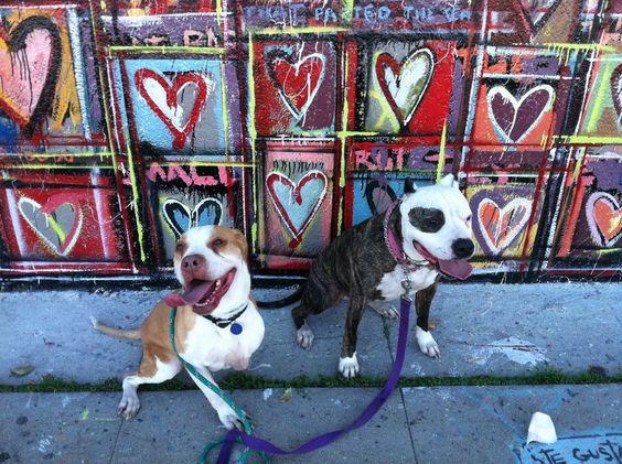 Heart art by rachel kice making an appearance on quot pitbulls amp parolees