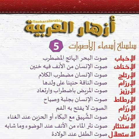 Pin By Abditch219 On اللغة العربية Words Word Search Puzzle Word Search
