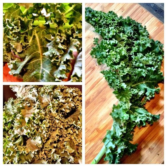 Why you should start eating kale!