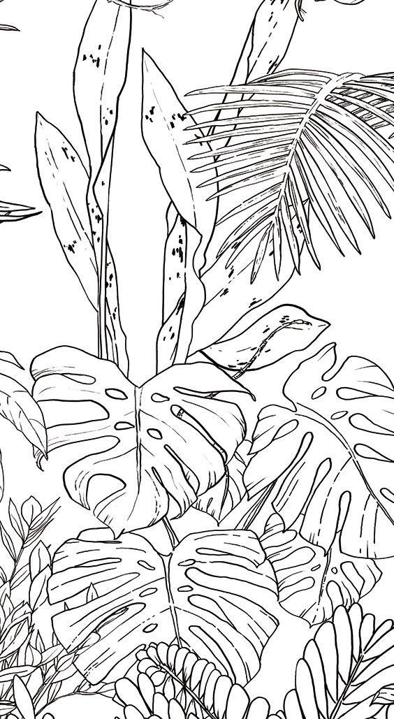 Papier Peint Jungle Tropical Noir Blanc Pour Ohmywall Créé