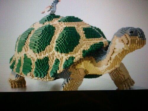 C'est une tortue  en legos qui peut servir de décoration.
