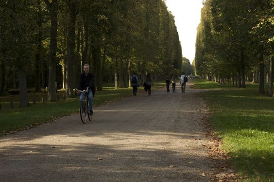 acres and acres of walking paths-Versailles