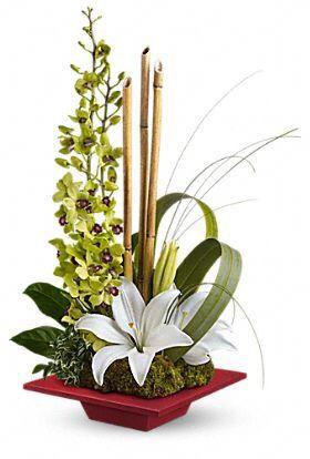 3 Lilis bicos. Varas de orquídeas, 3 varas delgaditas de bambú, follaje.