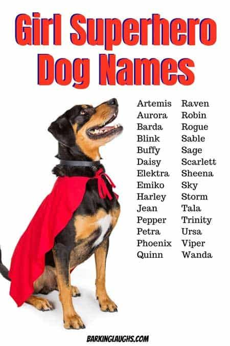 Female Dog Names And Meanings In 2020 Female Dog Names Dog Names Girl Dog Names