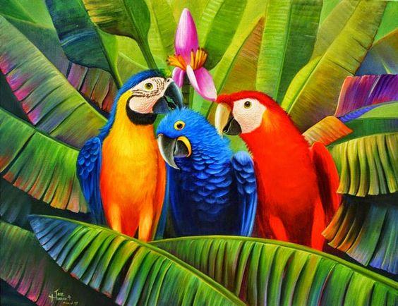 Imágenes Arte Pinturas: Cuadros de Guacamayos Escarlata con Flores y Fruta...