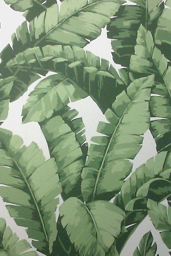 banana tree wallpaper project tiki bar pinterest big