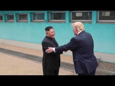 Trump My Way In 2020 Funny Funny Animal Jokes Videos Funny