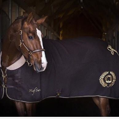 An exclusive rug in honey comb that is Quick Dry-treated, perfect for training and competition, but also for drying the horse.  #psofsweden #blanket #honeycomb