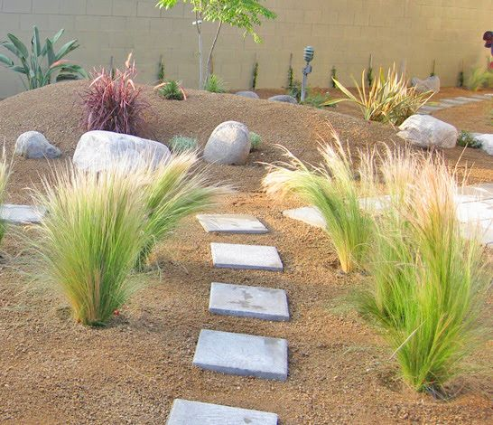 Decomposed Granite Used In Backyard To Create A Beautiful Desert Landscape Desert Landscaping Backyard Landscaping With Rocks Desert Backyard