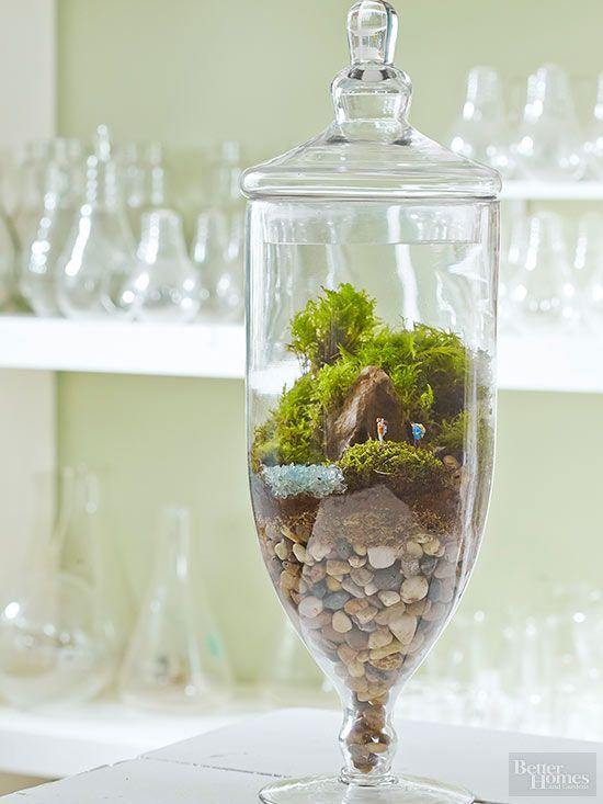 Terrarium Fairy Garden Inspiration Pinterest Gardens