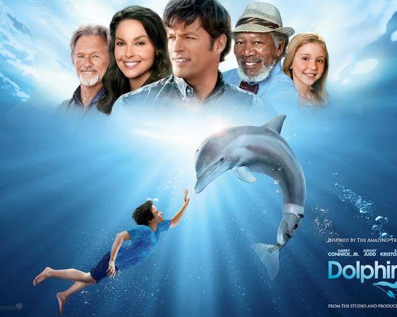 Dholphin Tali 2 full movie HD. allmoviesfreeforu.blogspot.com   ONLINE FREE MOVIES