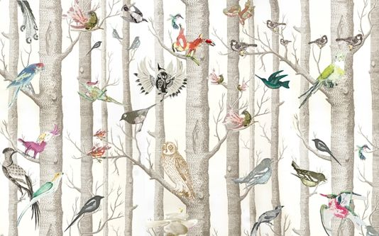 We had fun putting this dream wallpaper design together, a great mixture of birds on the classic Cole and Son woods wallpaper.