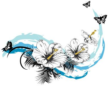 Drawings of hibiscu flower in pencil clipart guide for Hibiscus flower tattoo sketches