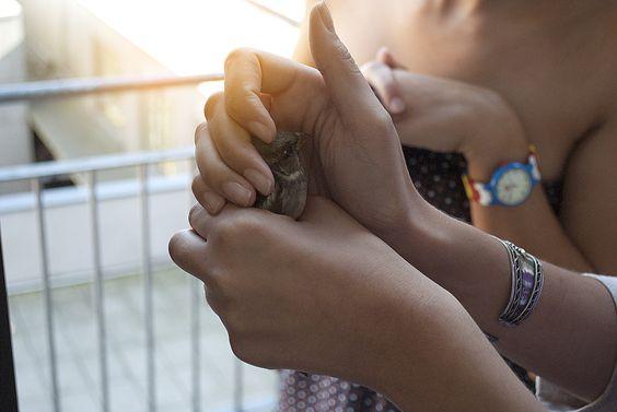 Was tun, wenn Du eine #Kurzzeitpflege benötigst?  http://blog.curafides.com/pflege/kurzfristige-pflege-kurzzeitpflege  #Pflege #Betreuung #Pflegekraft