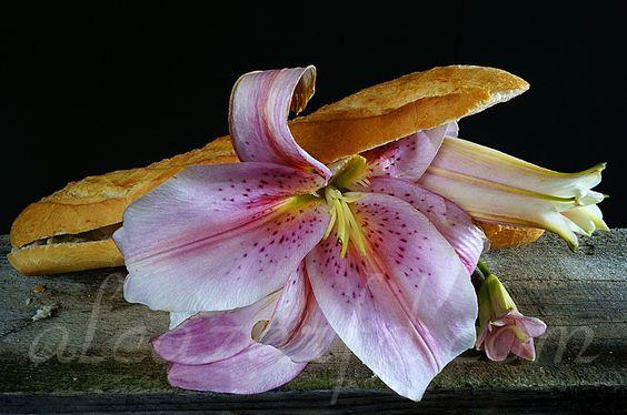 Bocadillo de flores1 Ref-0204