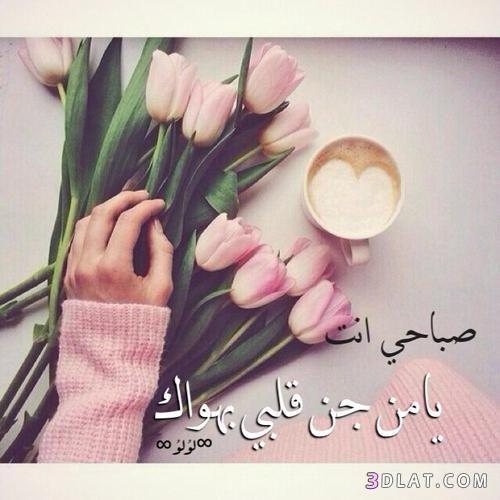 رسائل صباحية للحبيب والاصدقاء أجمل مسجات صباح الخير2020 Ribbon Slides Hann Kawaii Wallpaper