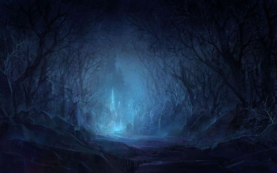 Foresta di notte. :)