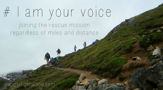 i am your voice - partnering with the persecuted, joining the rescue mission regardless of miles and distance (Copperlight Wood) #iamyourvoice