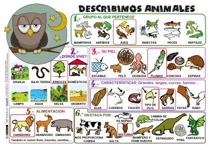 Se trata de una ficha para trabajar la expresión escrita mediante las descripciones de animales. Se puede entregar una a cada alumnos y poner en la clase a modo de mural. Los tamaños disponibles (unidad de medida A4) son 1×1, 2×1, 2×2 y 3×3, tanto a color como en blanco …