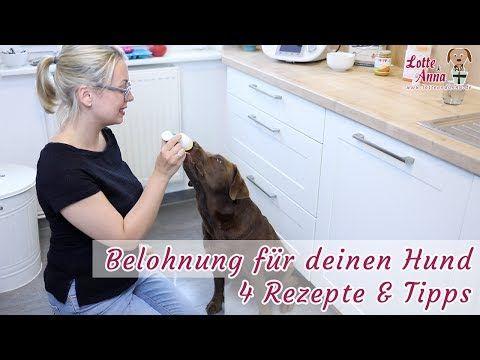 Belohnung Fur Dein Hundetraining 4 Rezepte Fur Schleckerchen Futtertube Lotteundanna De Youtube Hunde Hundchen Training Hunde Snacks