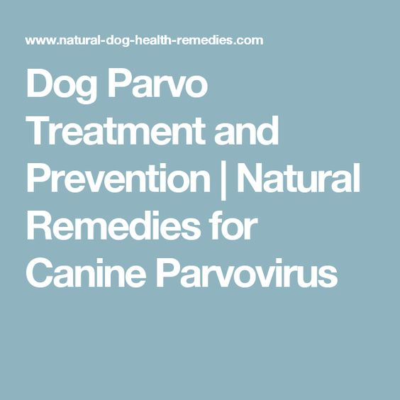 What are some treatments for parvo?