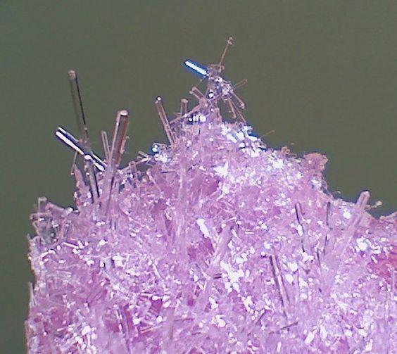 Make Salt Crystals Science Project