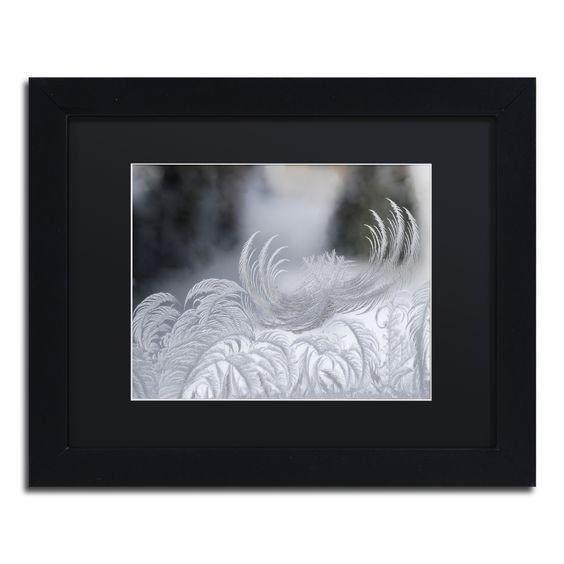 Kurt Shaffer 'February Window Frost' Matte, Framed Wall Art