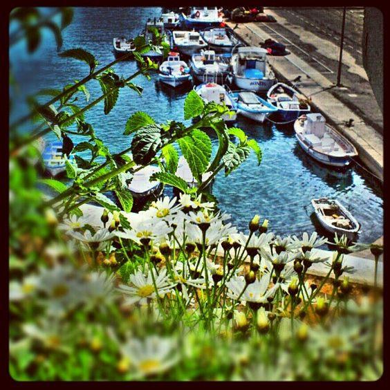 turismeametllademar's photo#ametllademar #ametllamar #terresdelebre #tarragona #catalunya #catalogne #cataluña #catalonia #pesca #fishing #pêche #platja #playa #plage #beach #estiu #verano #été #summer #sun #vacances #vacaciones #holiday #traveling #viajes #travel #visit #eatheword #vamosdeviaje #voyage #escapadas #experiences #traveller #food #gastronomia #gastronomy # happyholidays #mediterrani #mediterraneo #mediterranean #visiting #vacation #trip #tourism #tourist