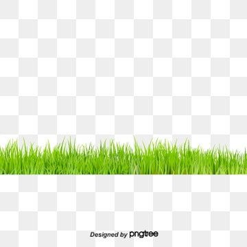 Grass Grass Clipart Green Png Transparent Clipart Image And Psd File For Free Download Grass Clipart Green Grass Background Grass Flower